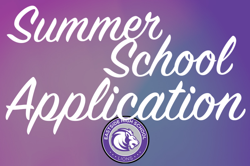 Summer School Application